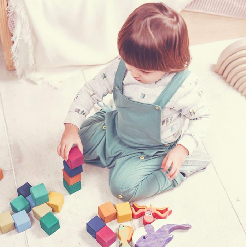 Semana 46 do salto de desenvolvimento, o bebê passa a se interessar pelas sequências e organizações